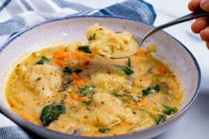 Bowl of vegan dumpling soup